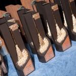 Hoy 16 de junio se hace entrega de los galardones de la DÉCIMOQUINTA EDICIÓN DEL CONCURSO ESCOBAS DE PLATA®, ORO® Y PLATINO® 2016-