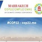 El Ministerio de Medio Ambiente presente en la Cumbre del Clima (COP22) de Marrakech (Marruecos)